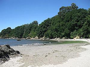 Miño Pontedoporco playa Alameda