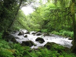 Ruta Rio Pedras Lugar De Chelo
